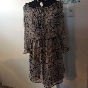 Snake Print  High Low Cold shoulder Dress Midi
